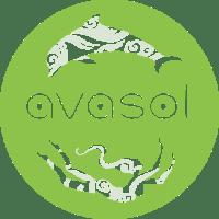 avasol-logo-color