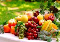 Сочетания фруктов, овощей и специй и их действие на организм