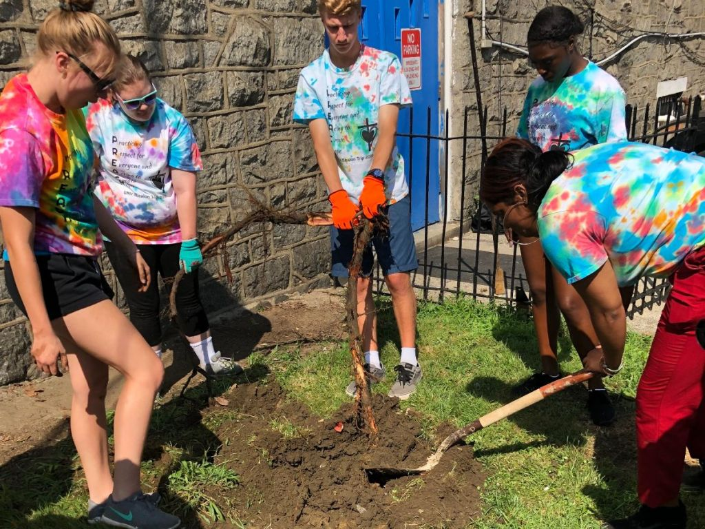 Roots run deep in the Southwest community – both for residents and trees!Young people from Buffalo NY area United Church of Christ congregations join new friends from Southwest to remove three old, unsightly tree stumps back of The Common Place community center at 58th St. &Chester Ave.