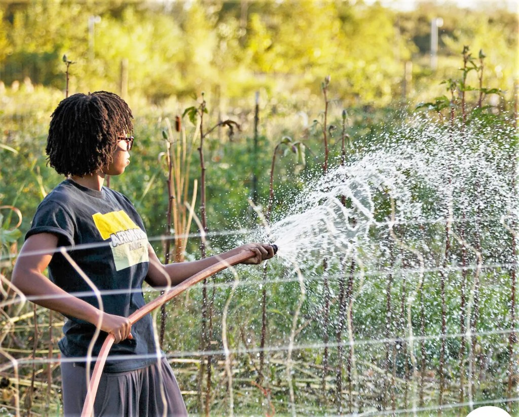 A loyal young Bartram's Garden intern carefully sprays water on newly planted Sankofa Farm vegetable beds. The Sankofa team expects excellent demand for its produce this year.