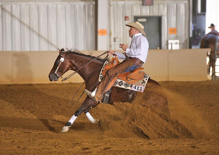 Selling 75 Performance & Halter Horses December Internet Auction