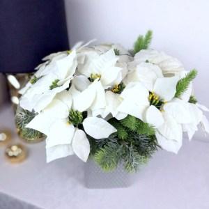 Kompozycja kwiatowa poinsecja biała nr 246