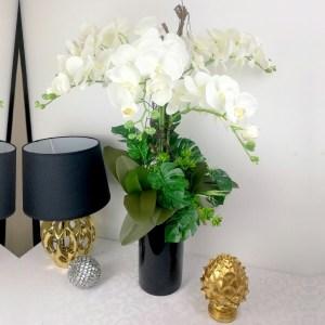 Elegancka Orchidea w tubie nr 261