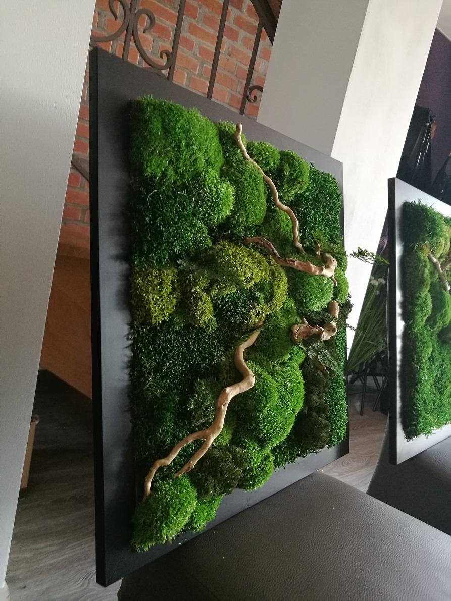 Obraz z mchu stabilizowanego 53 x 53 cm