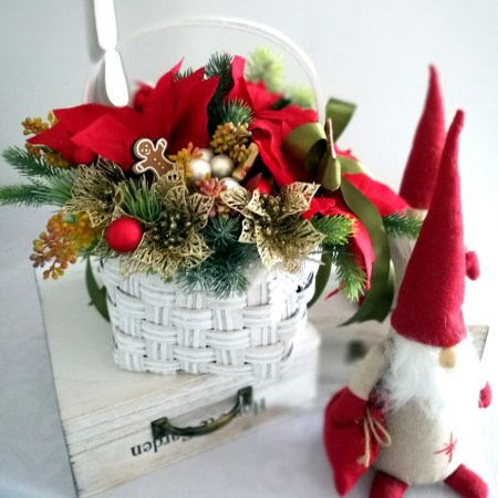 stroiki bożonarodzeniowe z gwiazdą betlejemską
