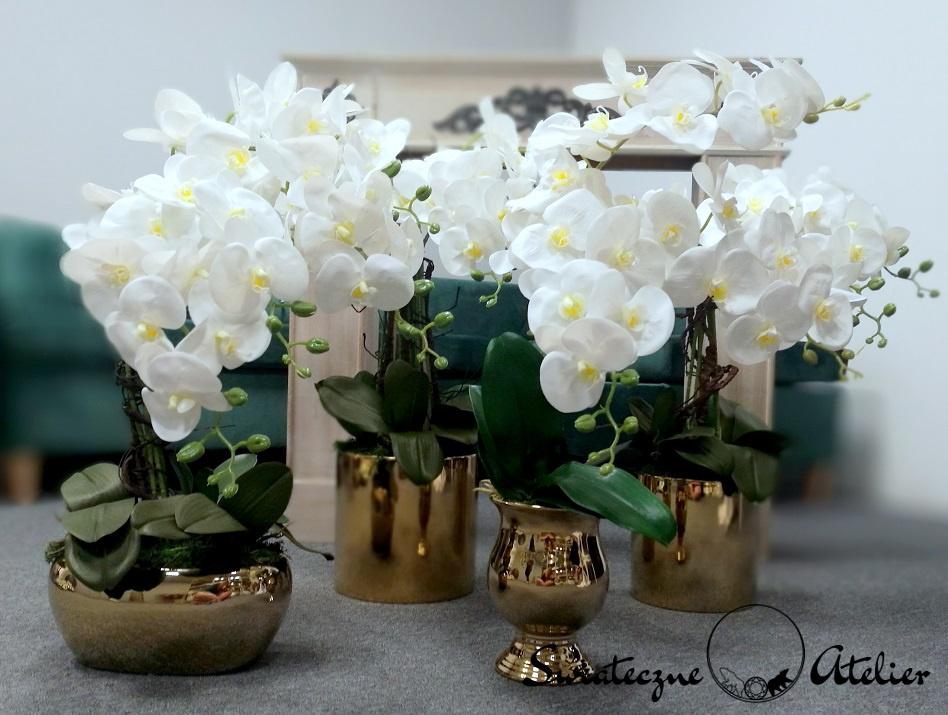 Białe storczyki w złotej donicy 3 nr 375