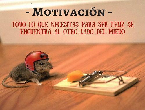 Motivacion triatlón