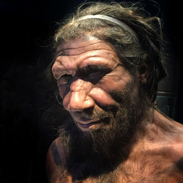 neanderthal photo
