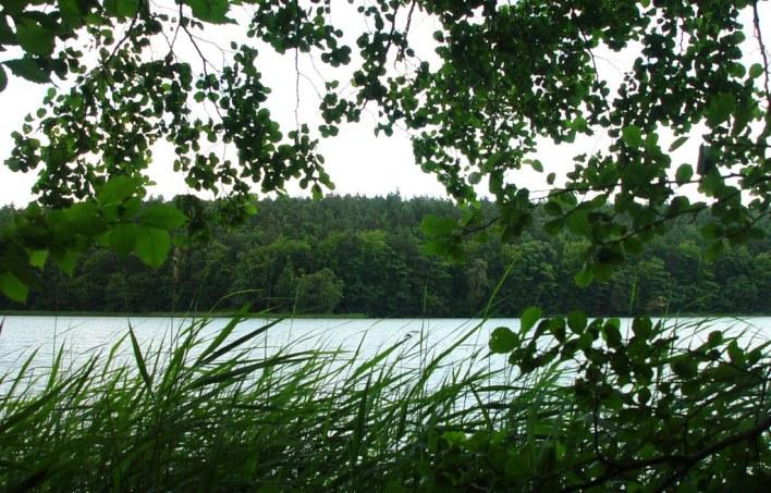lychen lake photo