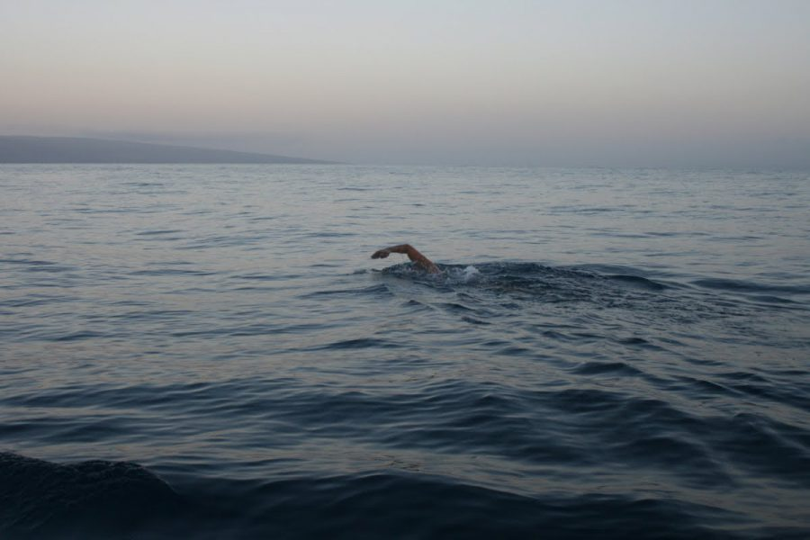 open-water-swimmer