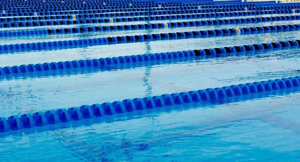 pool fl
