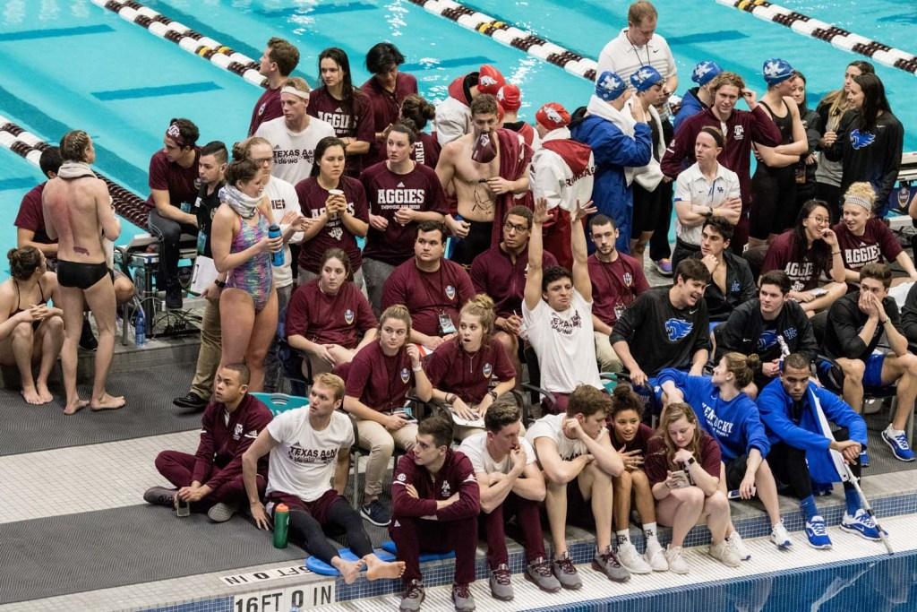 texas-am-kentucky-watching-diving-sec-championships