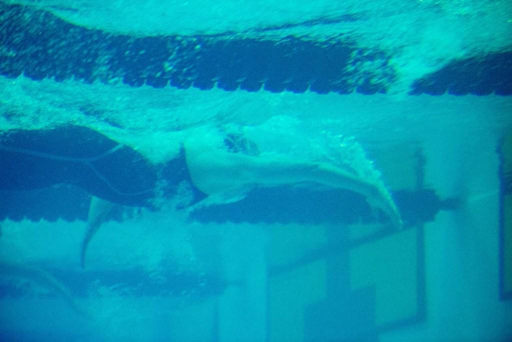 underwater-finish-generic-sec-championships