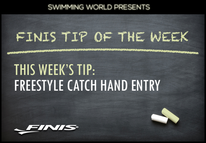 finis-tip-of-week-hand-entry