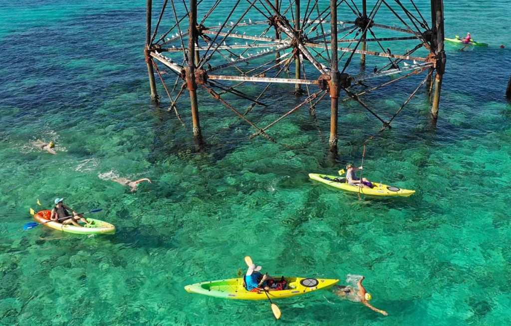 Kayakers escort swimmers around Alligator Reef Lighthouse during the