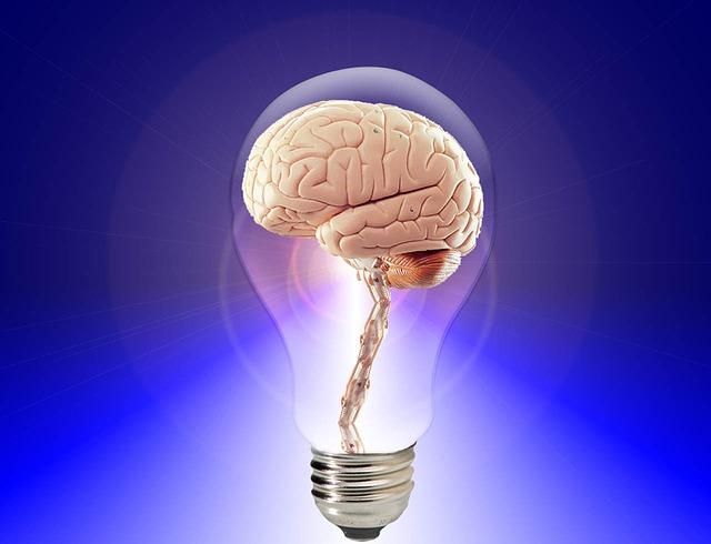 Creative Intelligence Mind Idea Think Human Brain