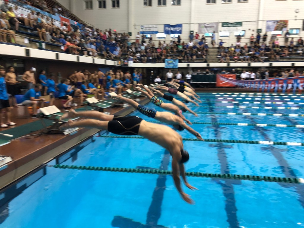 swimmers-diving