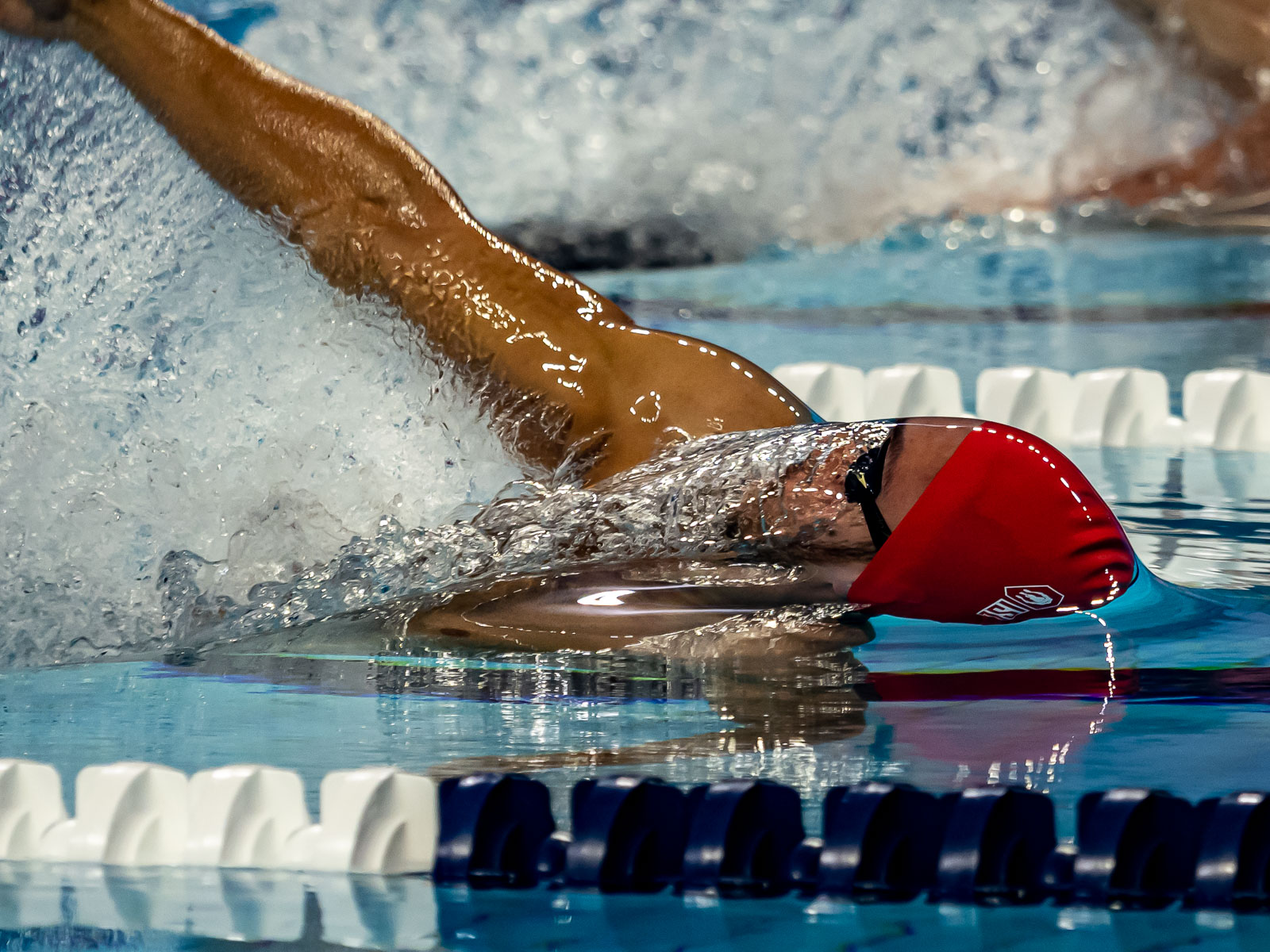 PHOTO GALLERY: International Swimming League Debut