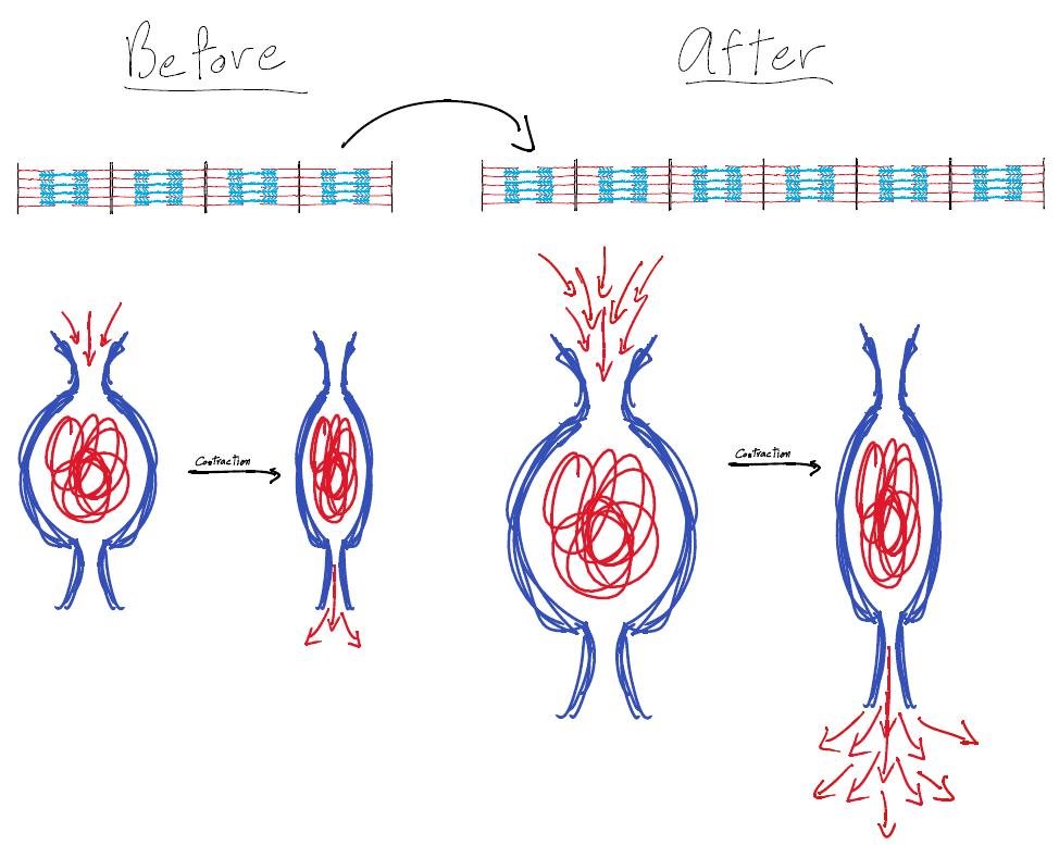 gmx7-how-it-works-photo 5