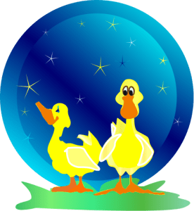 vector illustration of two ducks on a starry night counting stars