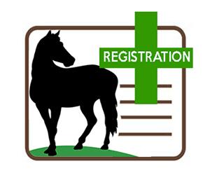 Equine Registration Only