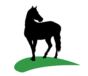 Equine Microchips