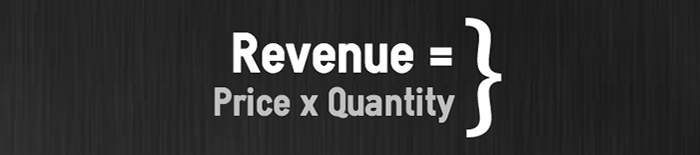 Business metrics revenue