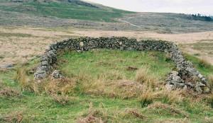 door of the sheep2