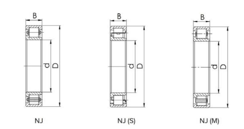 Cylindrical Roller Bearing NJ-type