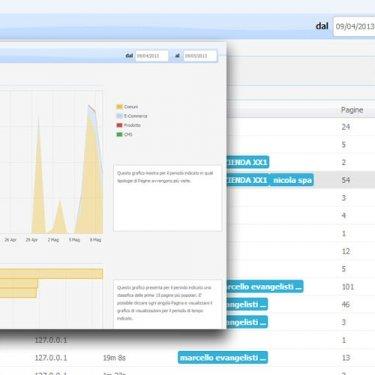 Visualizzare diverse tipologiedi grafici (visitatori, vendite, zone geografiche)