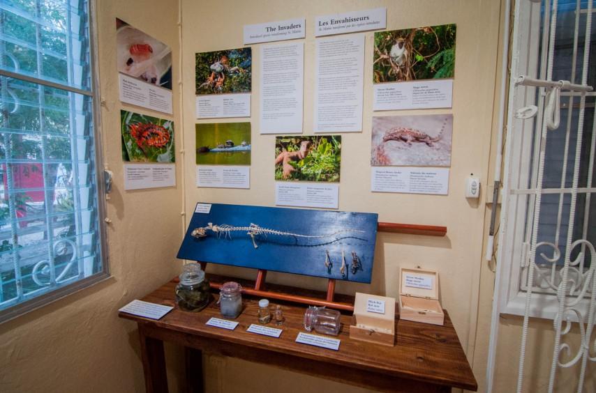 Les Envahisseurs, une exposition sur les espèces introduites, est l'un des derniers ajouts au musée.