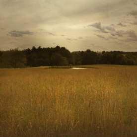 The Hog Farm (site of Woodstock Festival), Bethel, New York