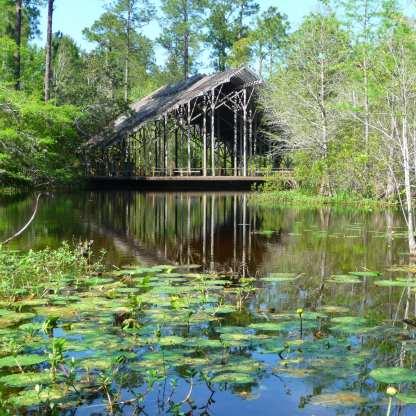Pinecote Pavilion, Crosby Arboretum, Picayune
