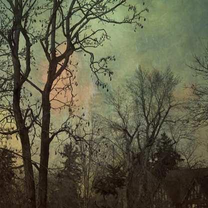 The Edge of Darkness ©Wendi Schneider