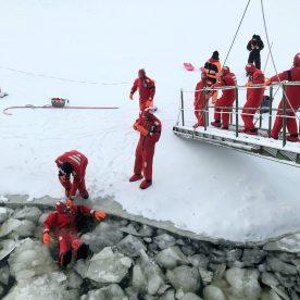 Lapland Journey #4 ©Carole Glauber