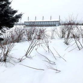 Lapland Journey #6 ©Carole Glauber