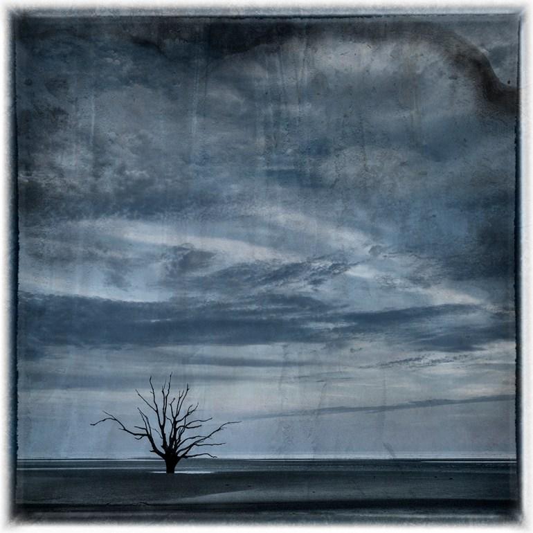 Beach by Diane Kirkland