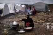 برنامج الأغذية العالمي: 6.5 مليون سوري يعانون من انعدام الأمن الغذائي