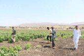 مقتل مزارعين بقصف للنظام شمال حماة