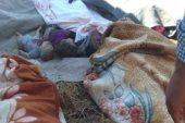 طائرات النظام ترتكب مجزرة في مدرسة بريف القنيطرة