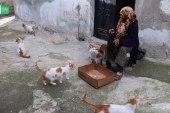 """تعرف على سيدة من إدلب تلقب بـ """"أم القطط"""""""