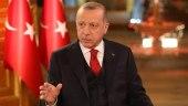 أردوغان يتحدث عن المنطقة الآمنة في سوريا