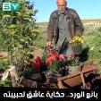 أحب الورد وأعشق الورد.. أبو محمد رجل ستيني يهوى جمع الورود وبيعها منذ 20 عاماً