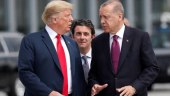 """ترامب يتحدث مع أردوغان حول سوريا.. ويصف المكالمة بـ """"الجيدة للغاية"""""""