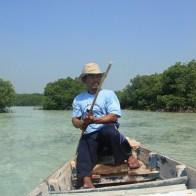 Keliling Hutan Bakau Pulau Pari