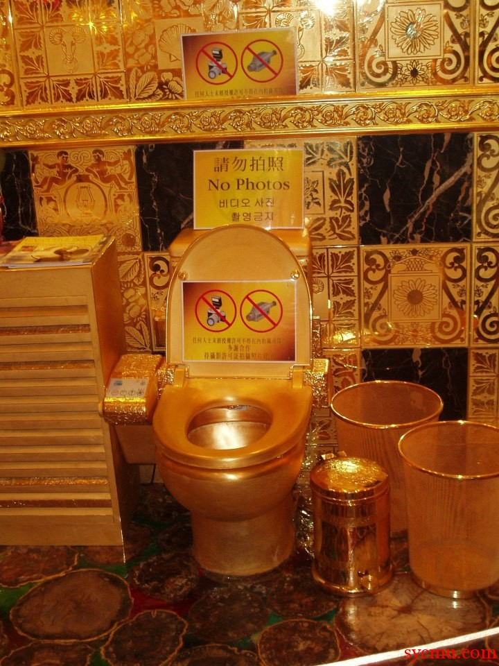 The Most Expensive Toilet in the World