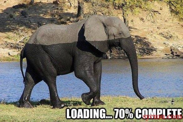 Elephant Loading shadow
