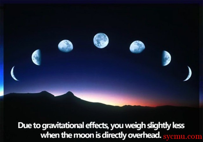Moon can reduce your weight