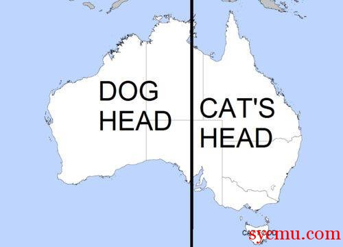 Austrailia Dog and Cat head