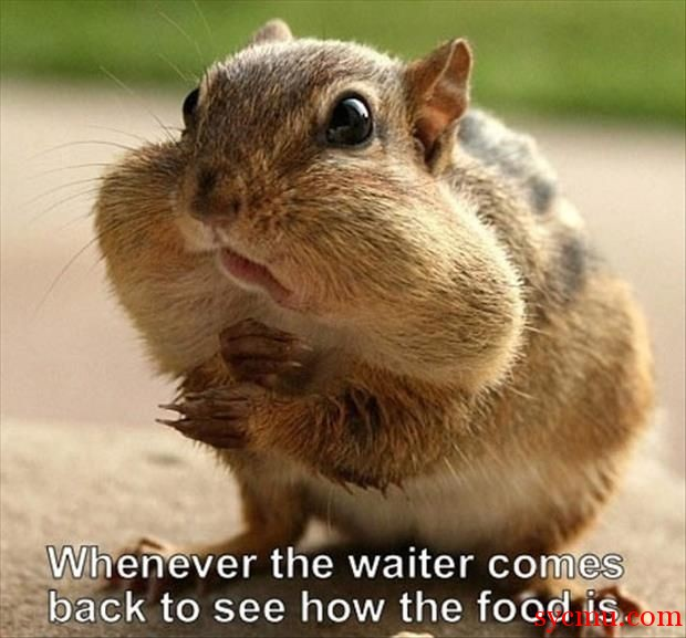 Whenever the waiter comes
